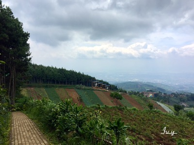 10 Foto Puncak Bintang di Bandung Jawa Barat + Lokasi Camping Malam Hari